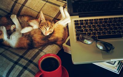 Should I Let an Employee Work from Home?